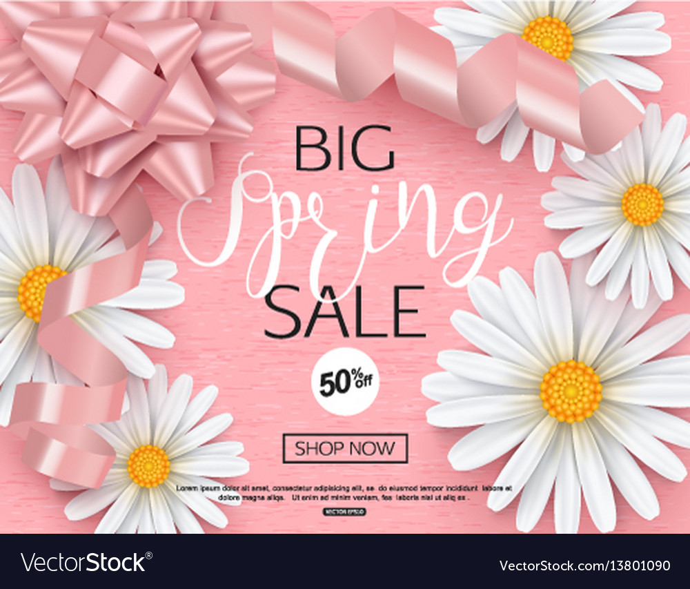 Spring sale banner template with daisy flower for vector image izmirmasajfo