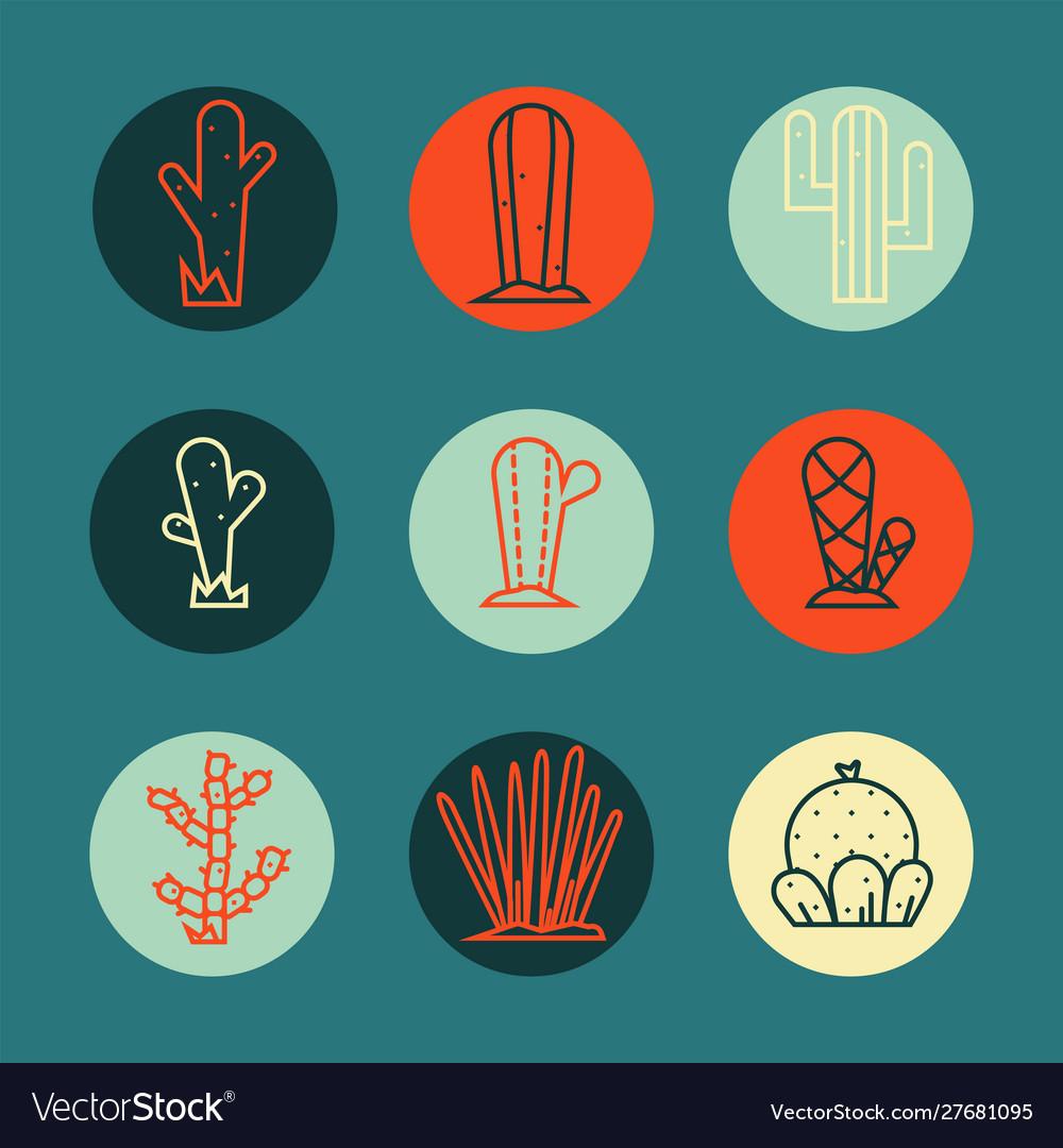 Cactus icon set collection exotic plants
