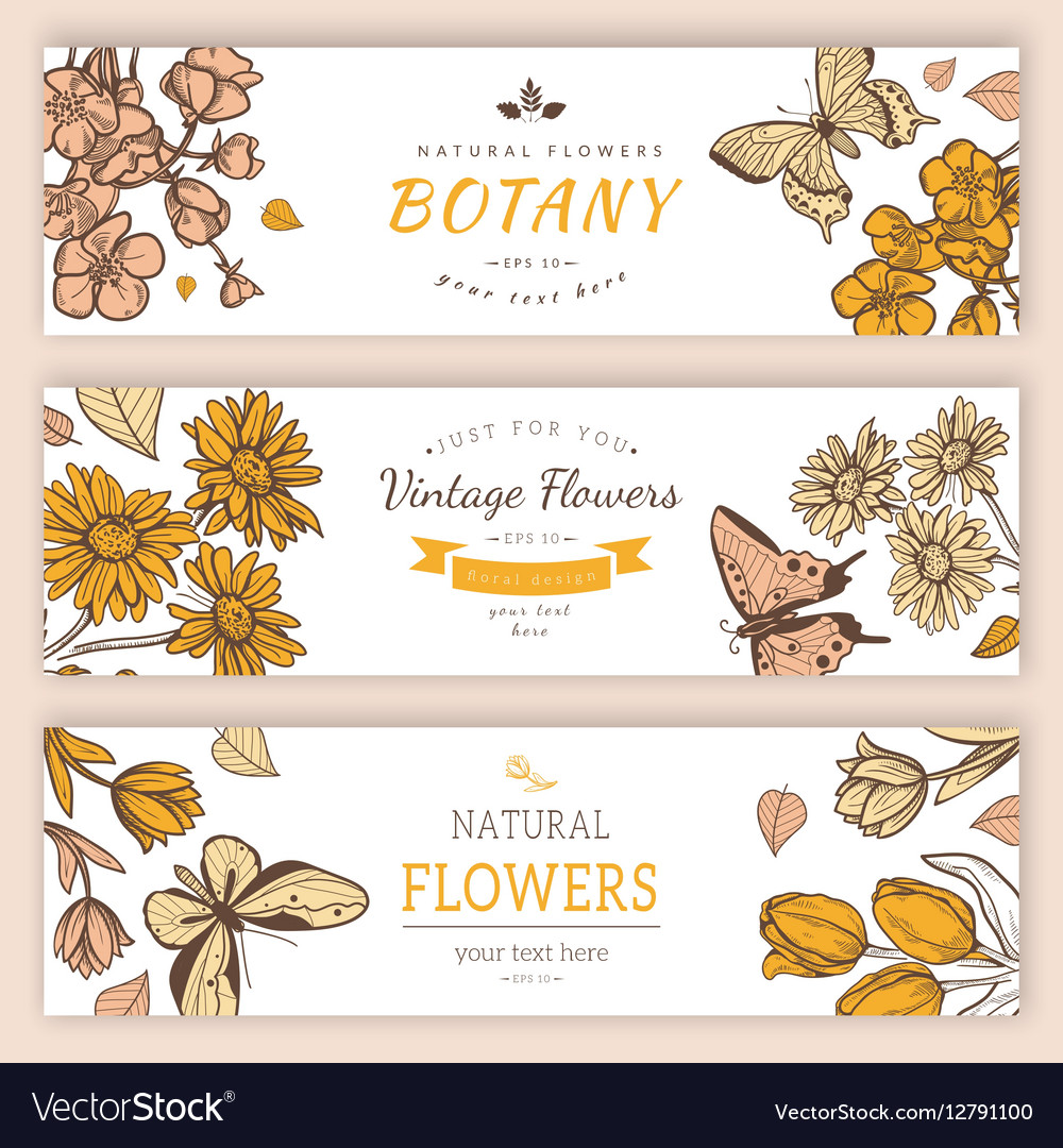 Flower vintage styled sketch banners