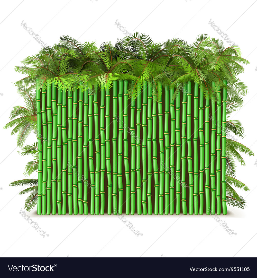 Green Bamboo Fence with Palm