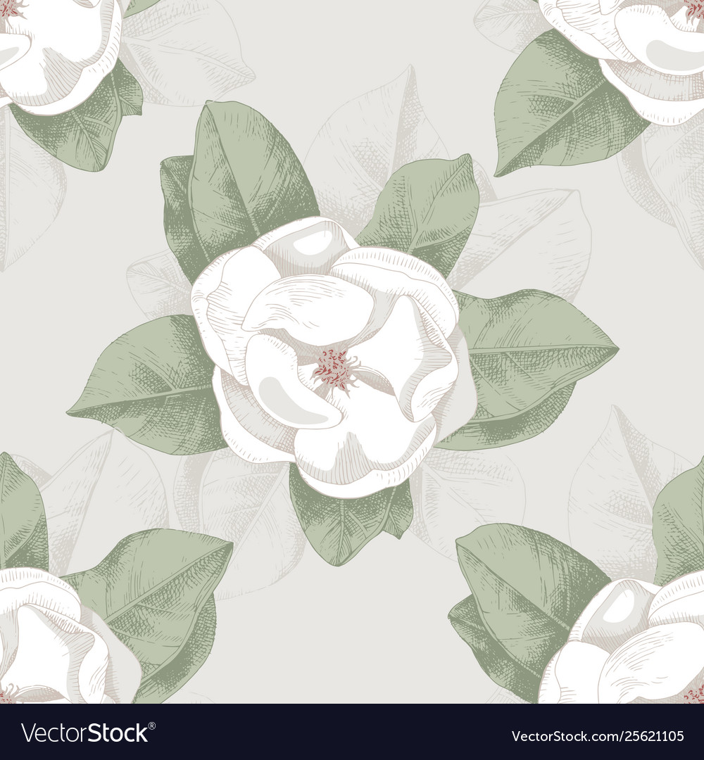 Seamless pattern with hand drawn magnolia