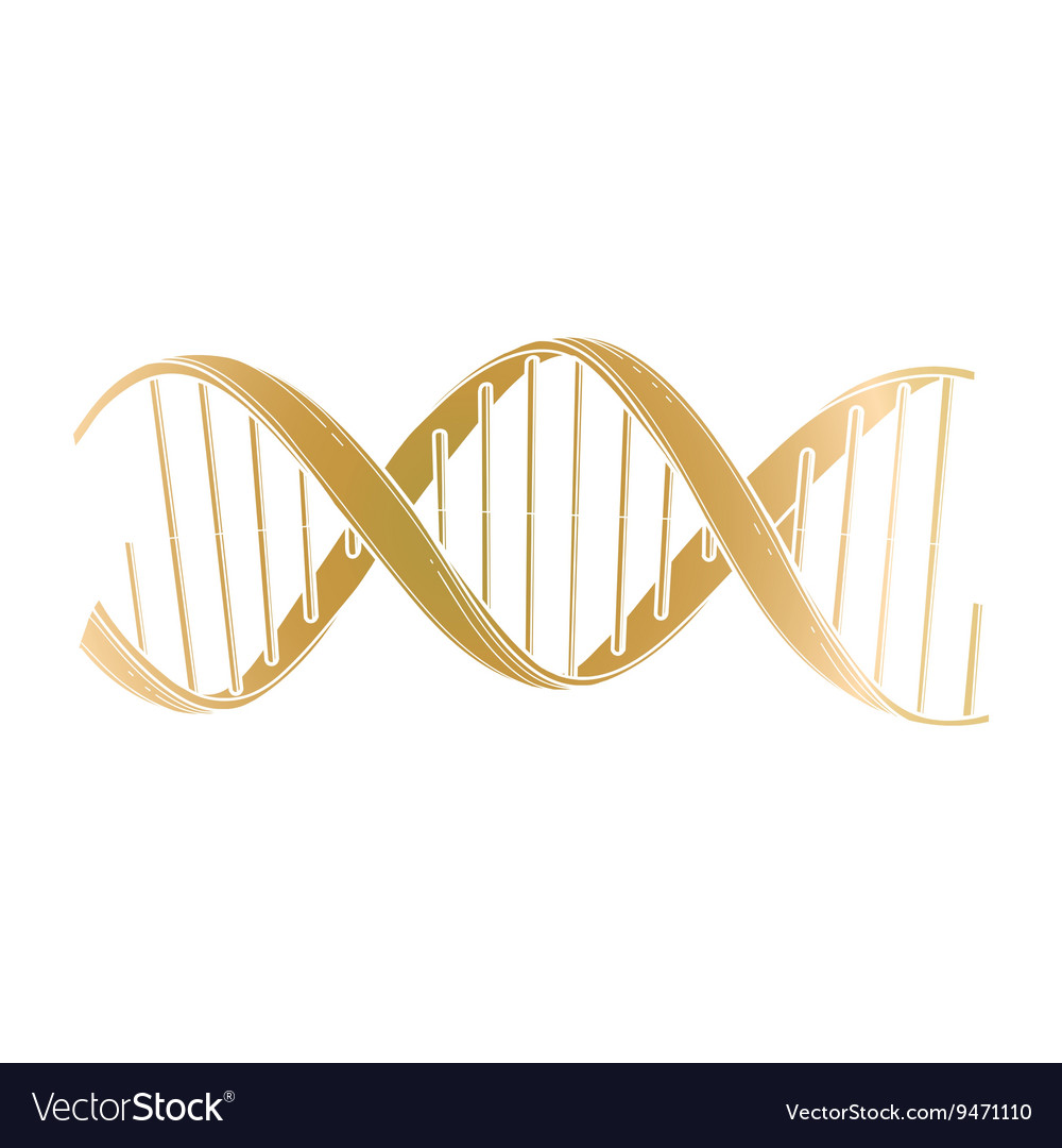 Graphic DNA structure