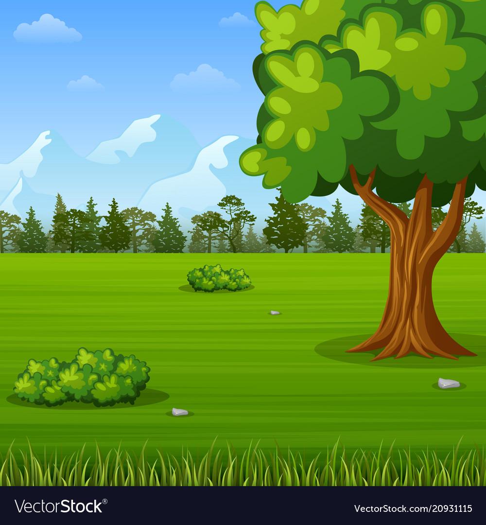Green forest landscape background