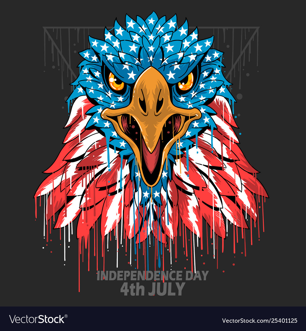 Eagle head america usa flag independence day vete