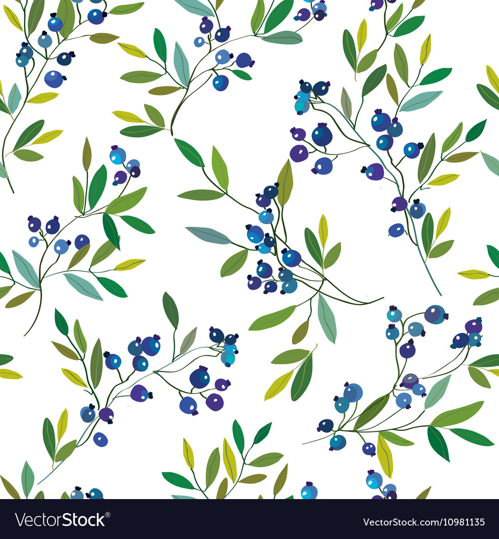 Blueberry seamless graphic pattern