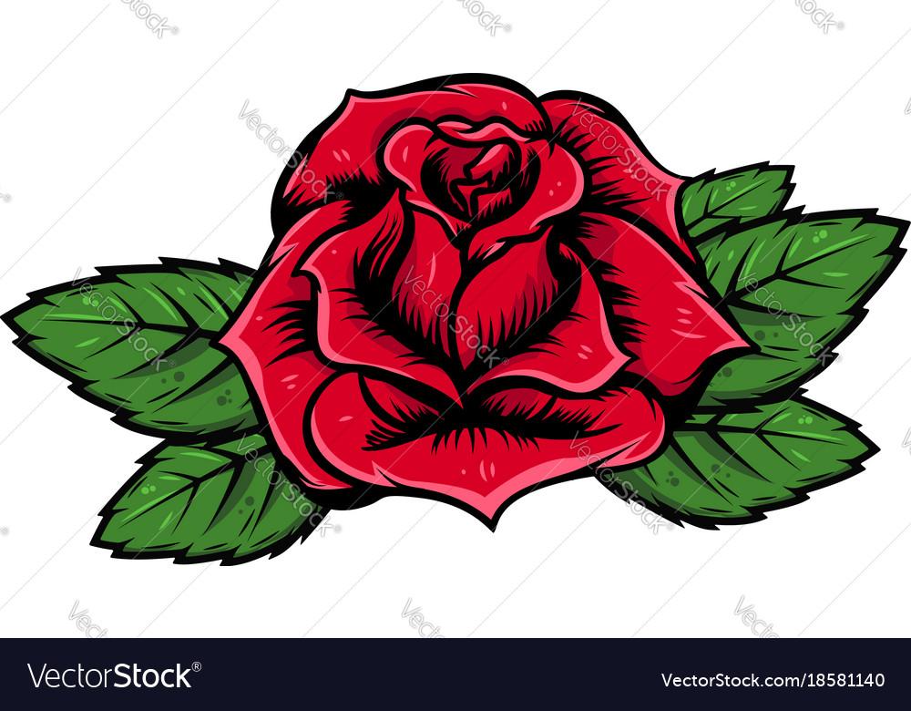 cartoon rose isolated on white background design vector image rh vectorstock com Cartoon Flowers pink rose cartoon images