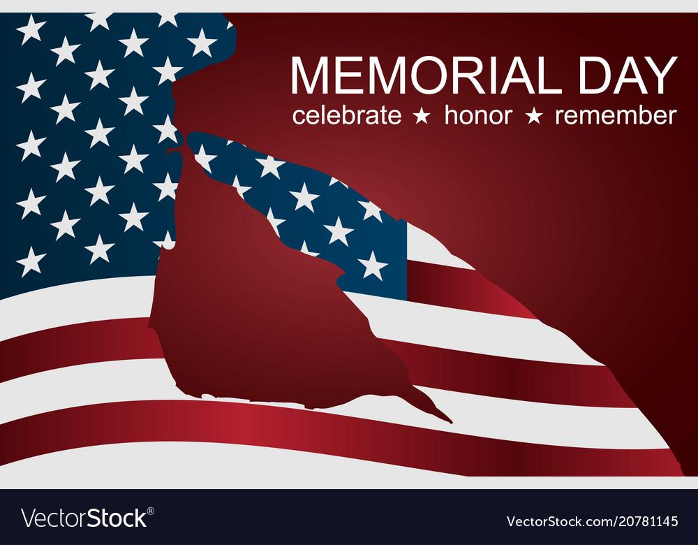 Captain saluting usa flag for memorial day