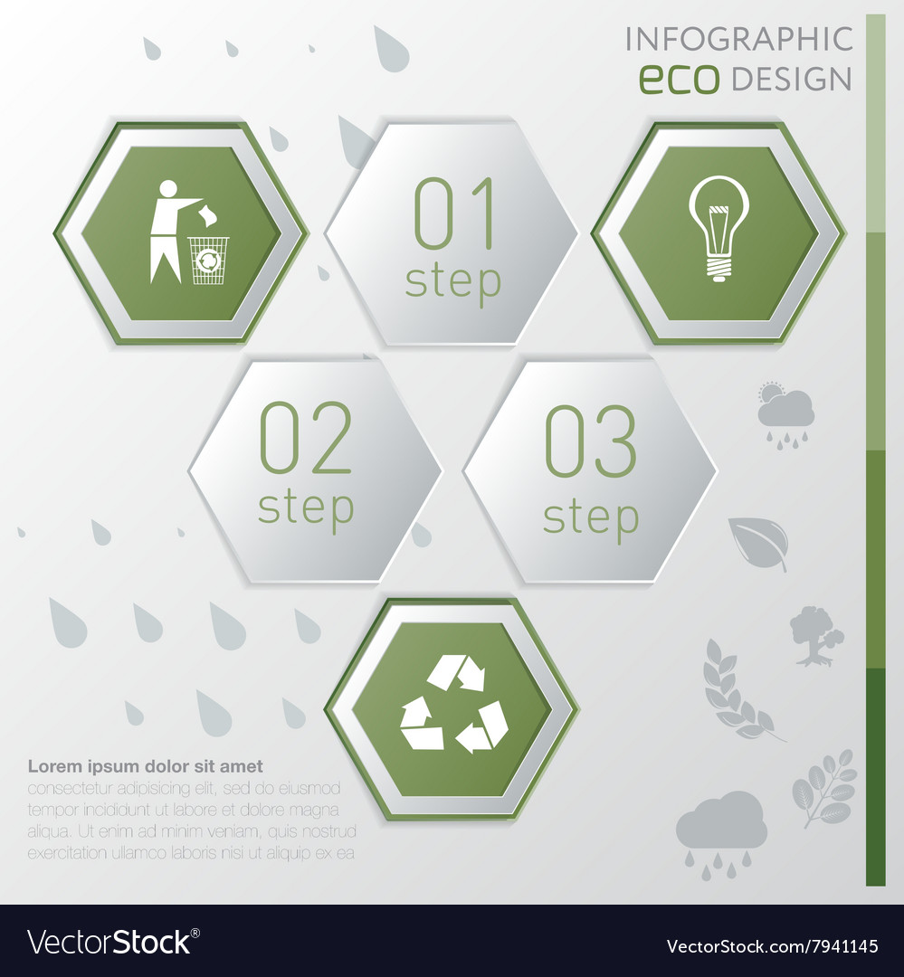 Template eco nature infographic icon and steps