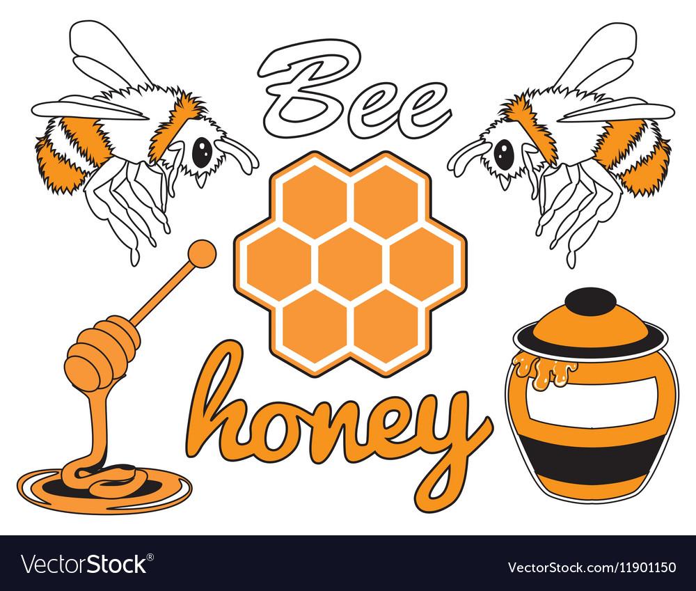 Bee honey set