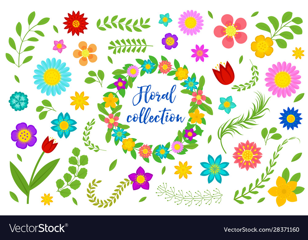 Flowers and leaves set floral collection isolated