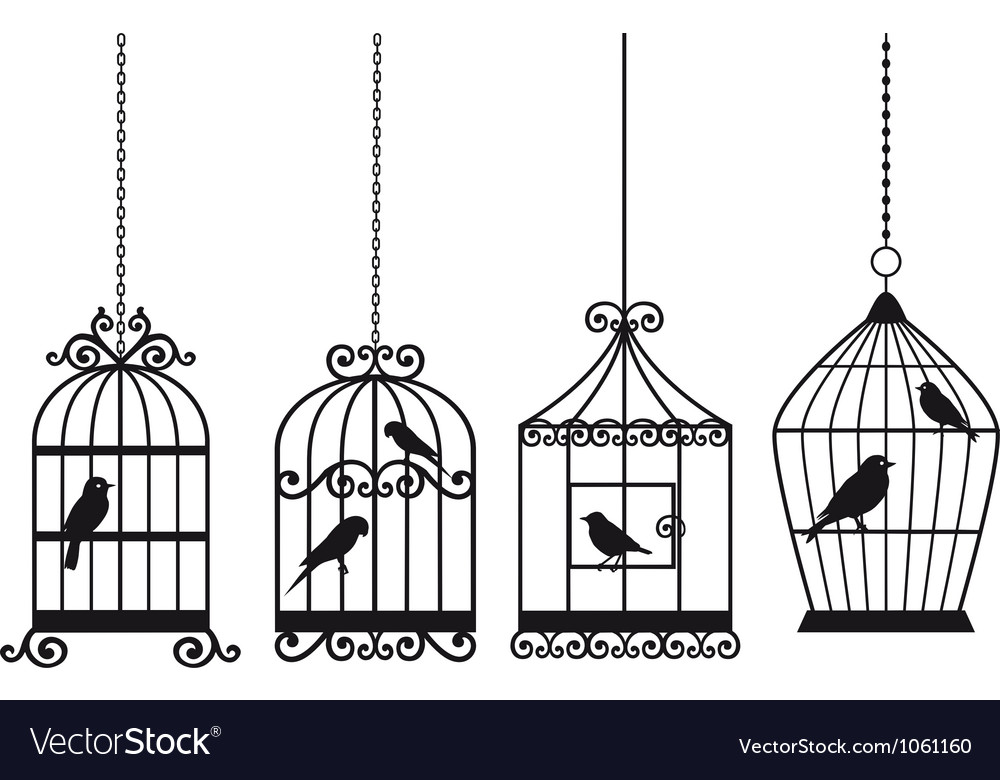 Vintage birdcages with birds vector image