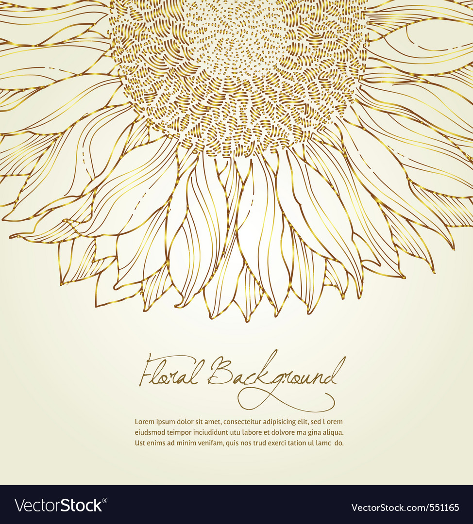 Floral sunflower background vector image