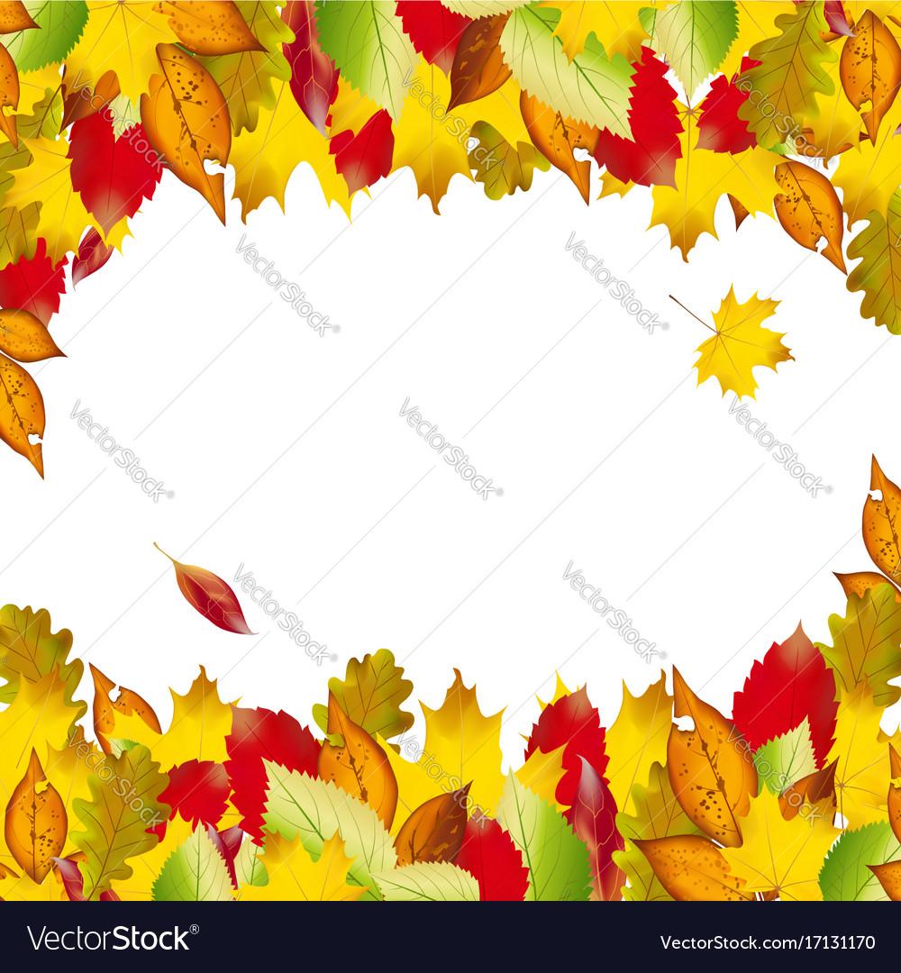 Autumn colorful leaves fall backgroun