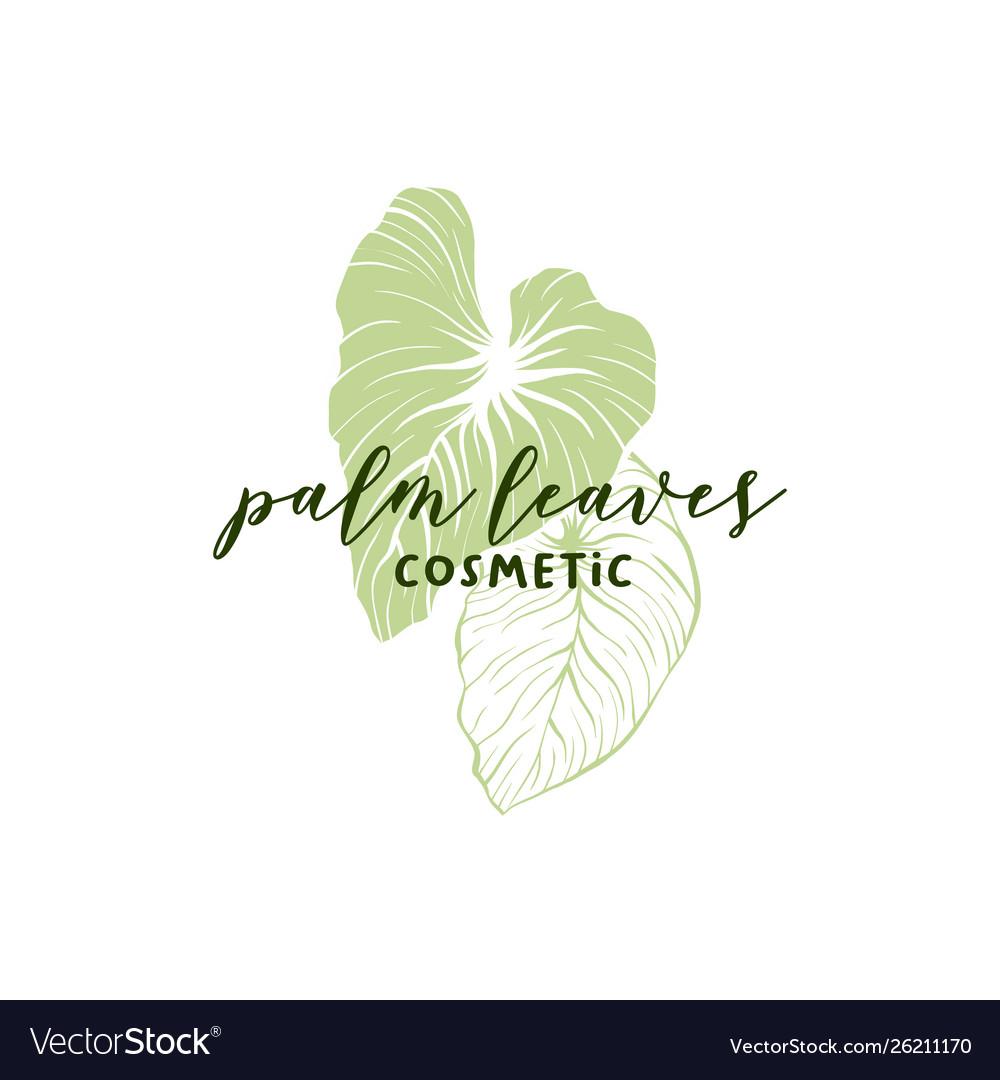 Palm leaves hand drawn logotype layout