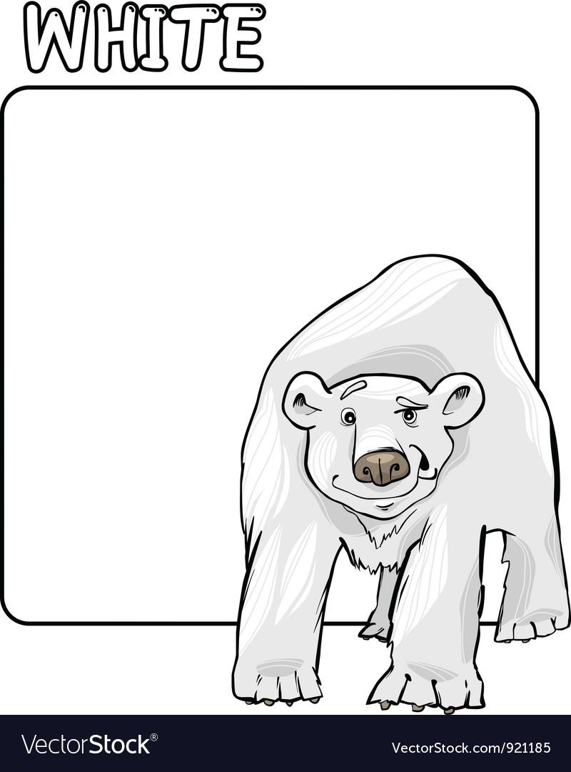 Color White and Polar Bear Cartoon