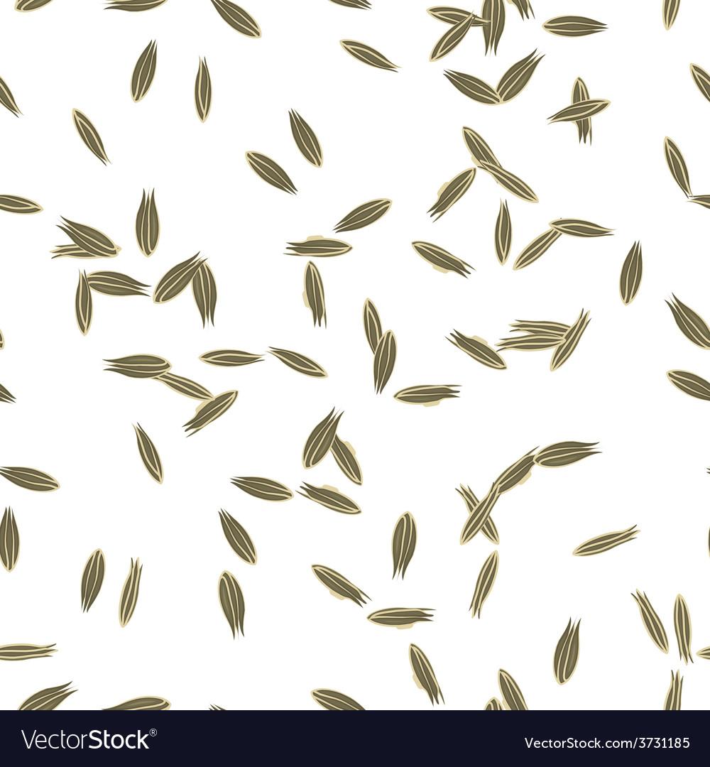 Cumin Seeds vector image