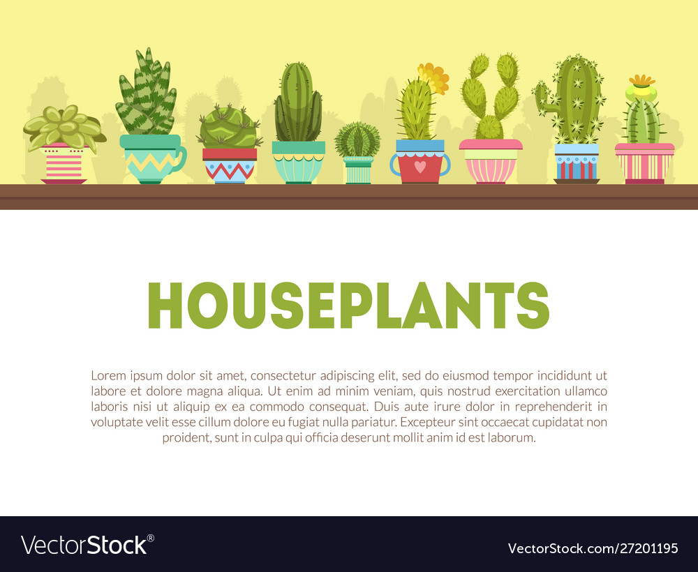 Houseplants banner template with cute cactus and on house plant propagation, house plant identification guide, house plant wall, house plant bugs identification, house plant identification by leaf, house plant name, tropical plant id, house plant identification by flower, house plant pests, aquarium plant id,
