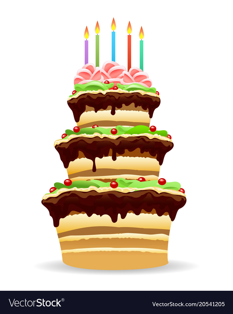 Astonishing Birthday Cake With Candles Royalty Free Vector Image Personalised Birthday Cards Veneteletsinfo