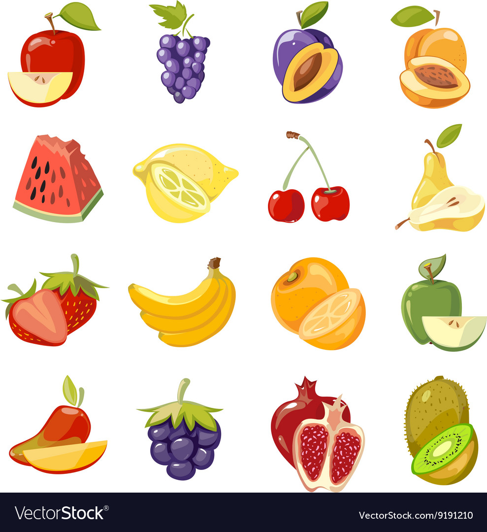 juicy fruits collection royalty free vector image