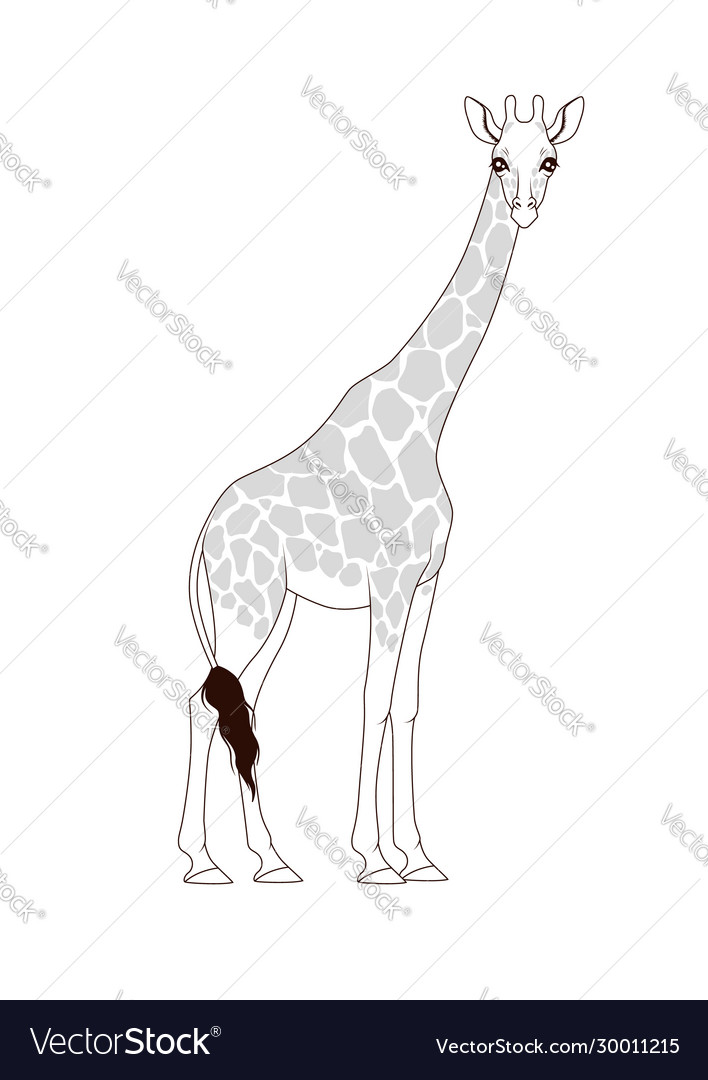 Coloring Book Giraffe Royalty Free Vector Image