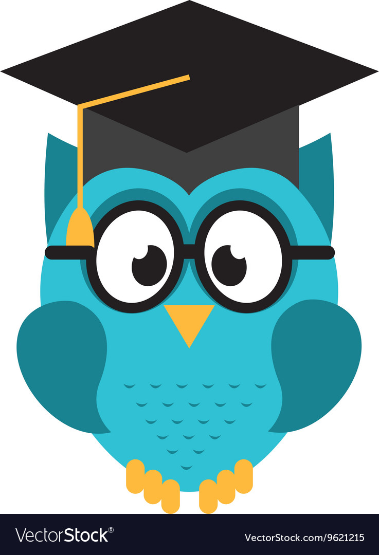 Owl graduate isolated icon design Royalty Free Vector Image
