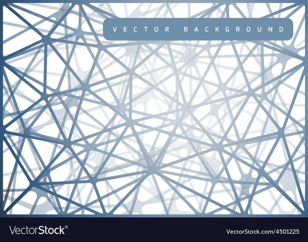 spiderweb design royalty free vector image vectorstock