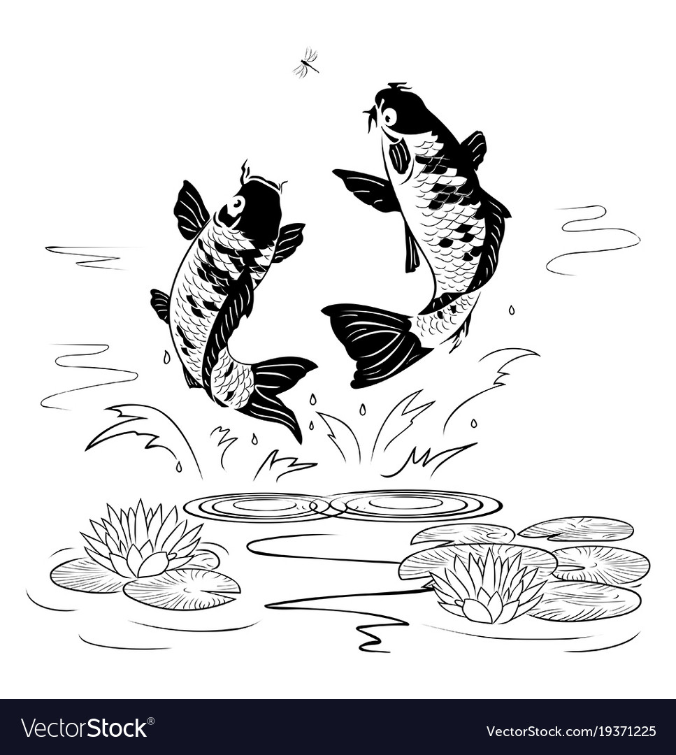 Two carp jump out from water after a dragon-fly