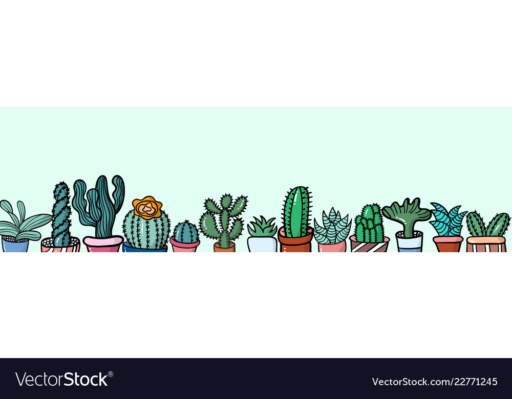 Colorful cactus background