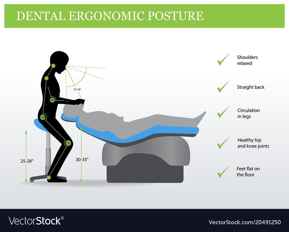 Ergonomics In Dentistry Correct Posture Royalty Free Vector