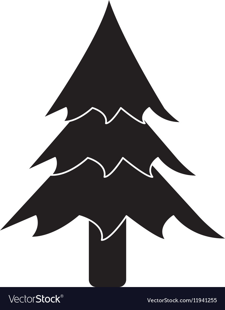 Pictogram pine tree forest camping icon vector image