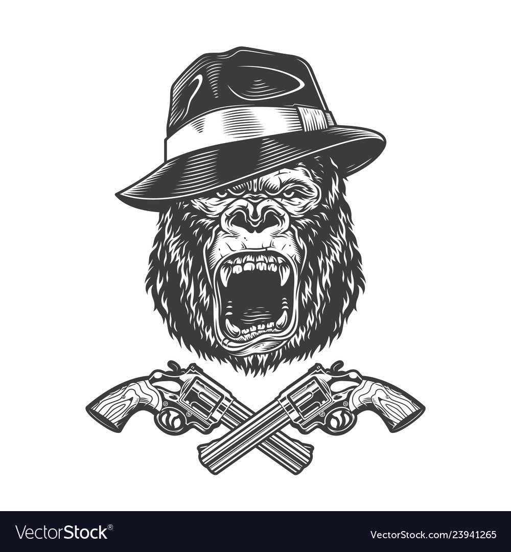 Angry gorilla head in fedora hat Royalty Free Vector Image 19a52ad28bc9
