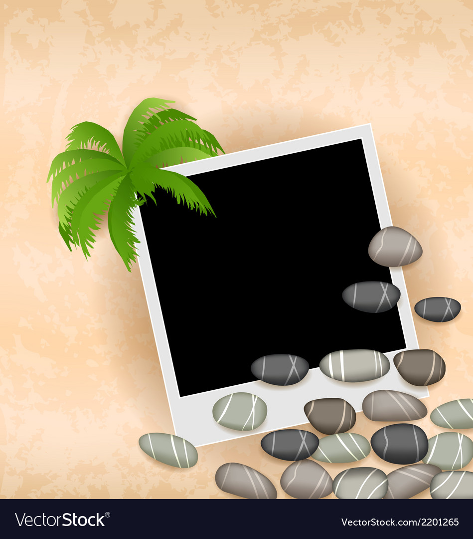 Photo frame background with stones and palm