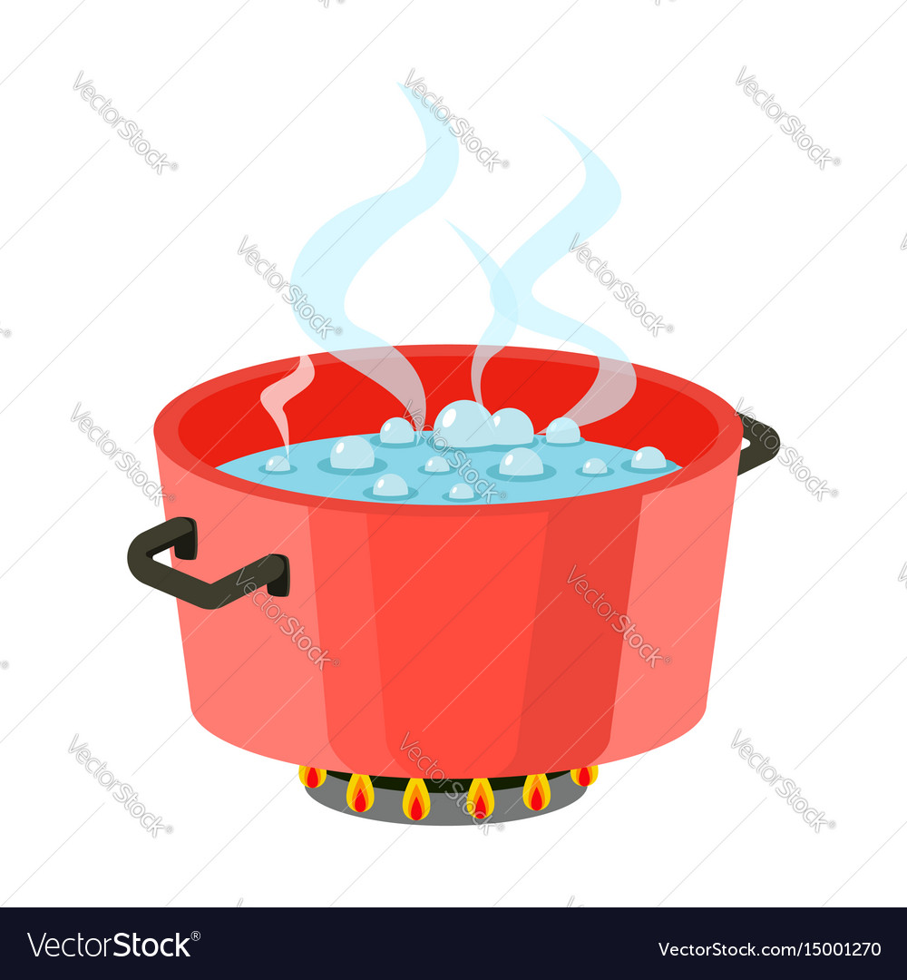 Boiling water in pan red cooking pot on stove with