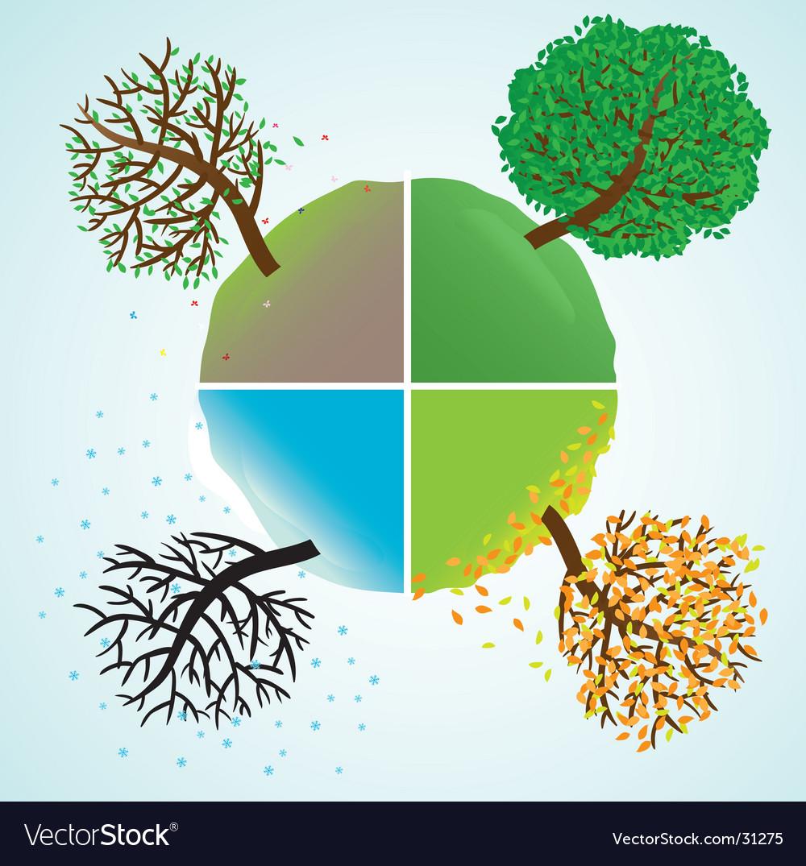 Change of seasons of year vector image
