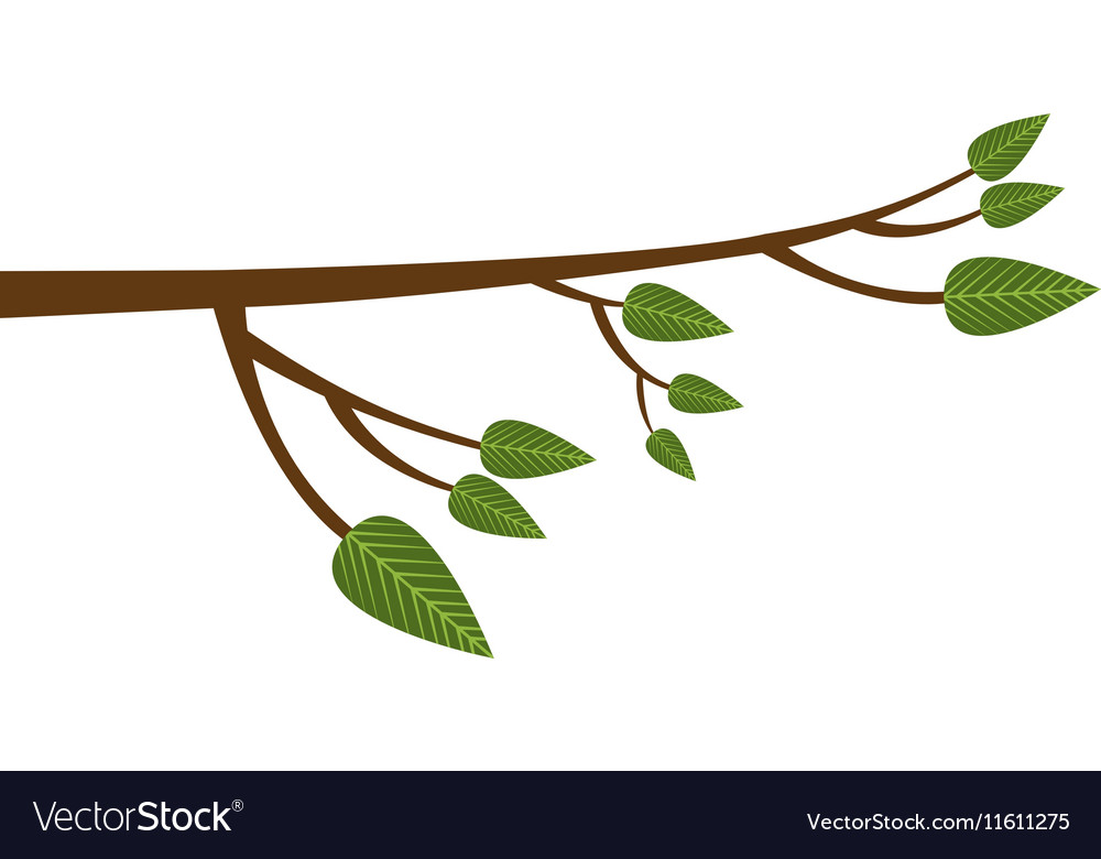 tree branch icon image royalty free vector image rh vectorstock com tree branch vector image tree branch vector with leaves