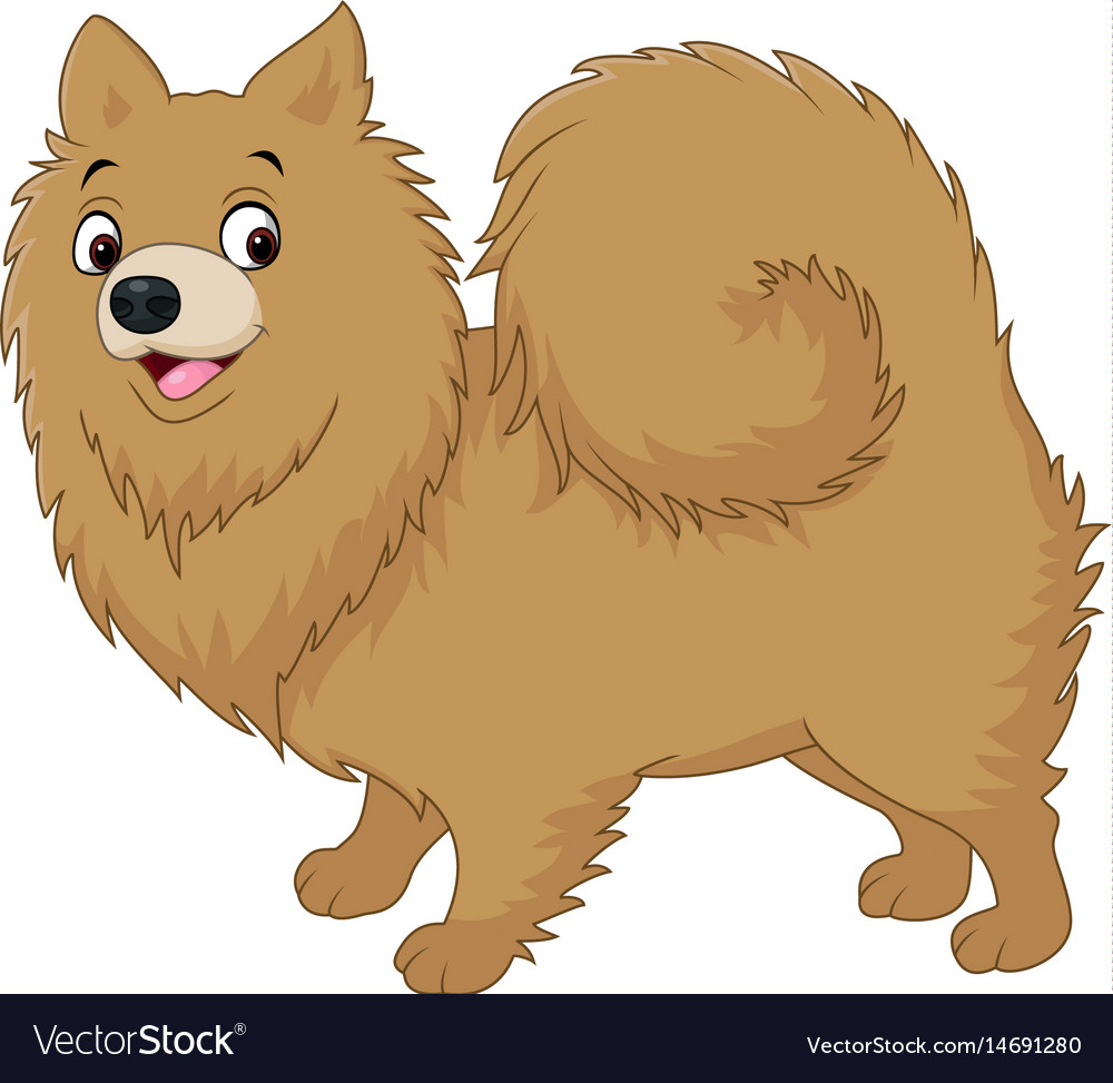 Cartoon dog pomeranian husky