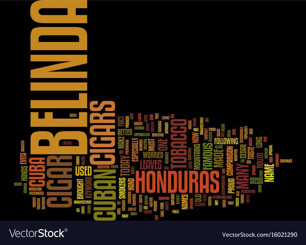 Belize adventure tours text background word cloud vector image