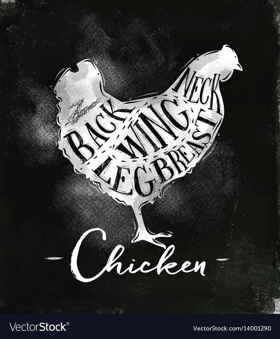 Chicken cutting scheme chalk