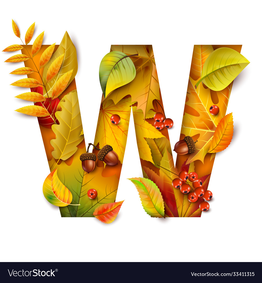 Autumn stylized alphabet with foliage letter w