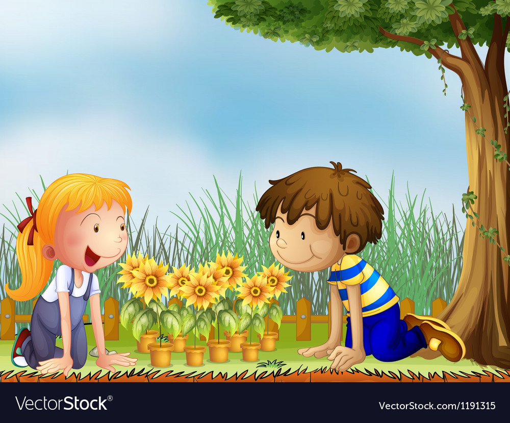 Kids watching the pots of sunflower vector image