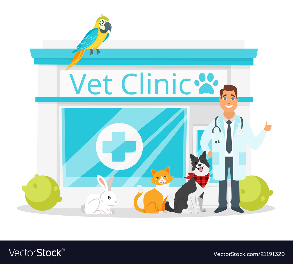 Vet clinic with doctor