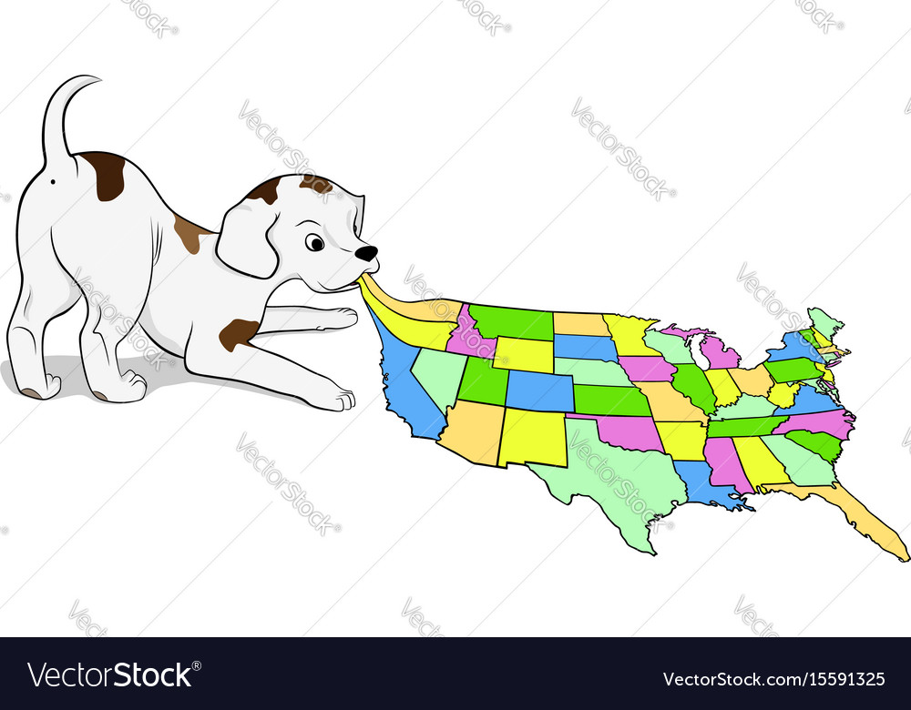 Small puppy playing with a map of the usa on satellite maps of usa, small new england main street, small printable maps, land grants usa, national capital of usa, small map with roads, small california map, united states maps usa, map from usa, road map usa, russian invasion of usa, small earth map, small new york map, small street map, national animal of usa, national library of usa, national bank of usa, compass of usa, seal of usa, presidential flag of usa,