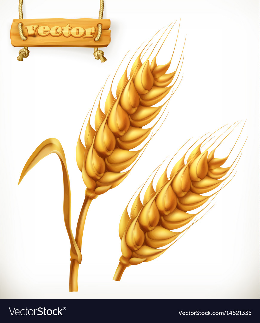 Wheat 3d icon