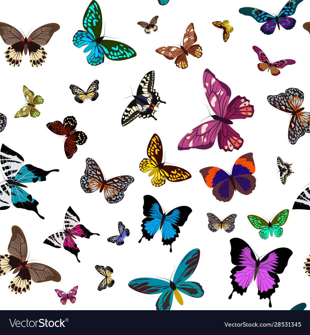 Seamless colorful pattern design with butterflies