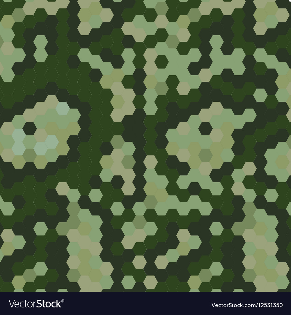 Camouflaje army style background vector image