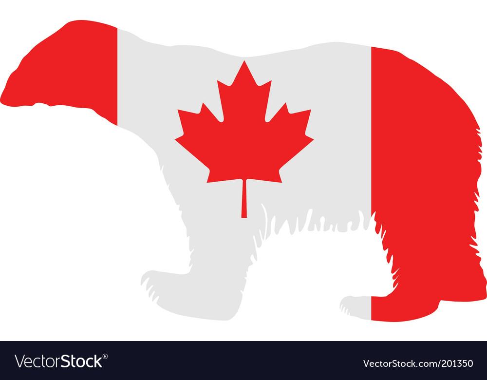 Canadian polar bear vector image