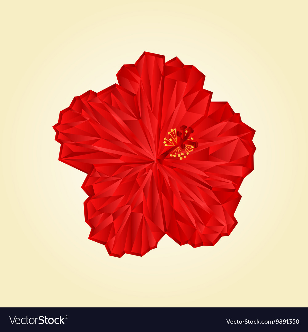 Red hibiscus flower chinese rose polygons vector image izmirmasajfo