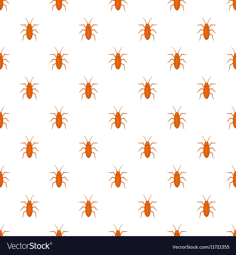 Cockroach pattern cartoon style vector image