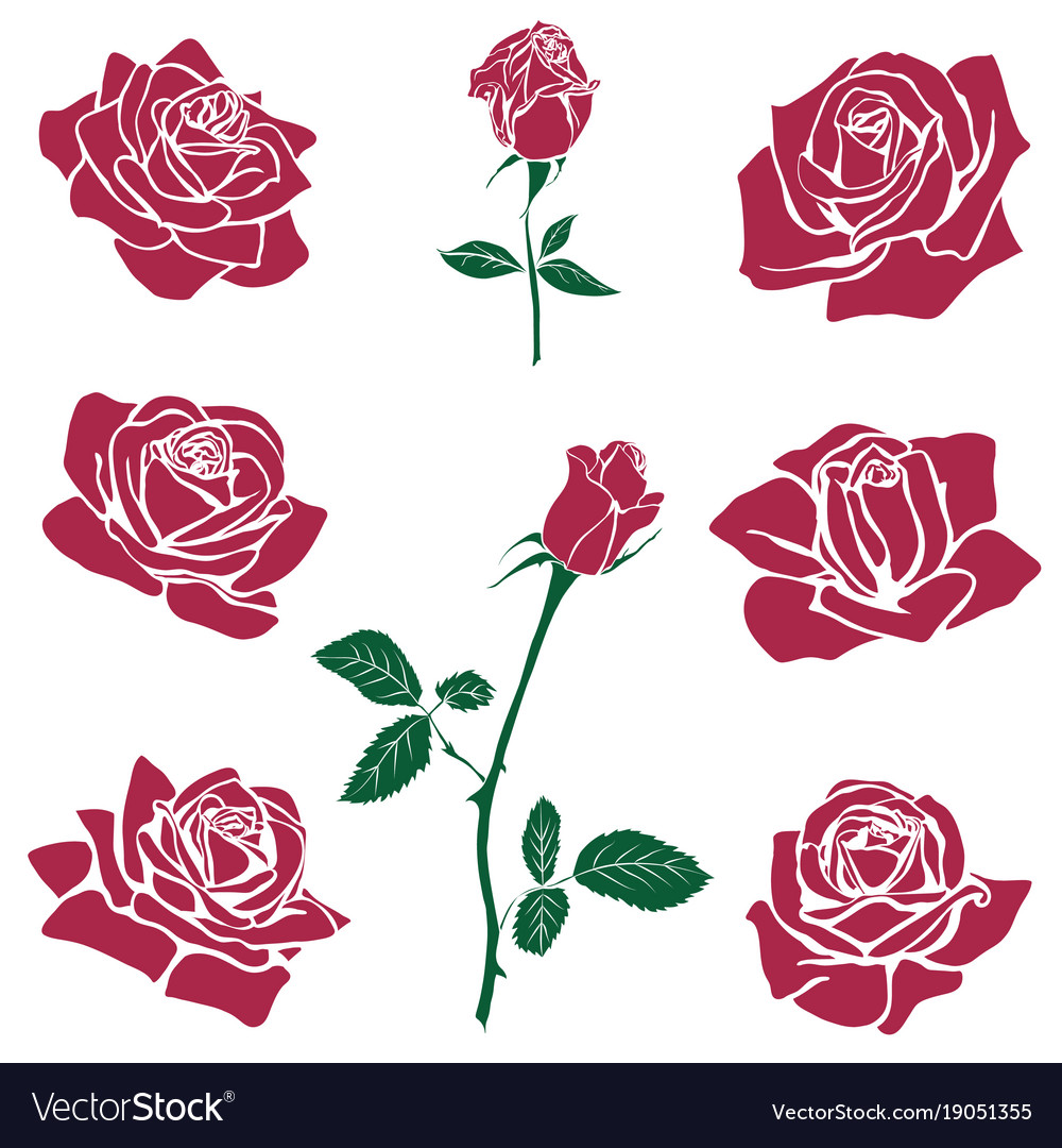 Silhouettes of roses