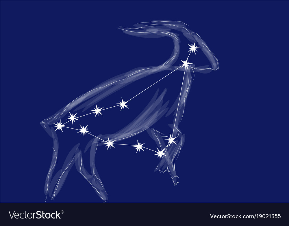 Zodiac sign-capricorn vector image